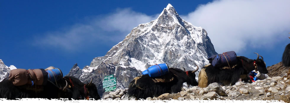 mount everest base camp trek, trekking in nepal