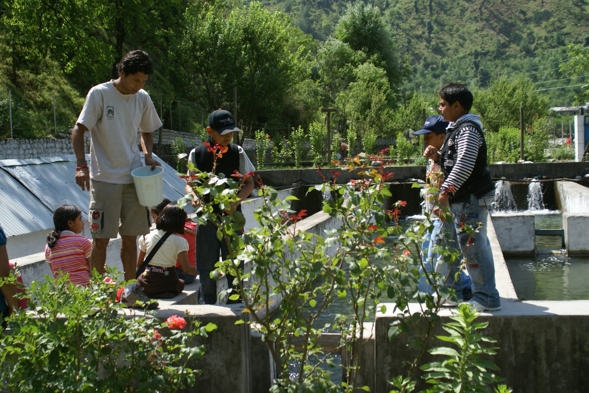 Camping Programme in Manali