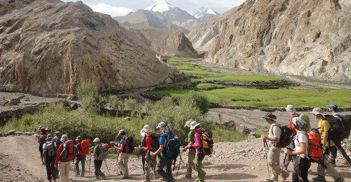 In The Markha Valley Trek